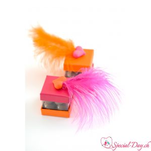 Plumes 7-10cm - Orange (20 pces)