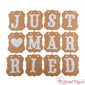 Spruchband Just Married - Vintage